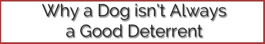 006-beware-of-the-dog