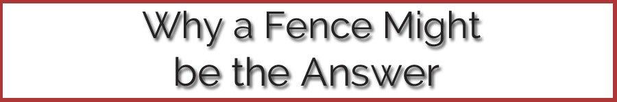 010-a-Fencing